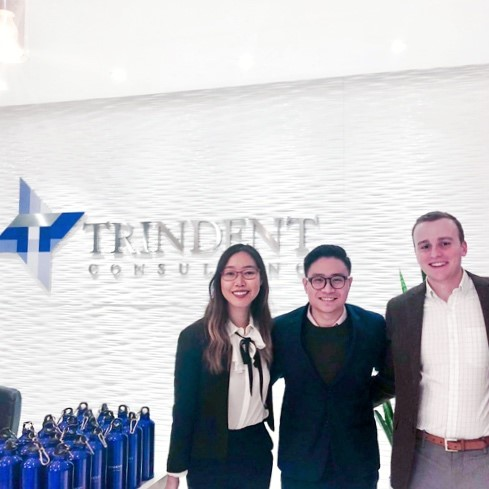 Working at Trindent A year in Review