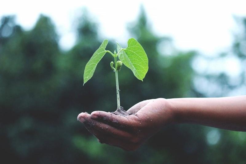 sustaining process improvement - Sustaining Process Improvement